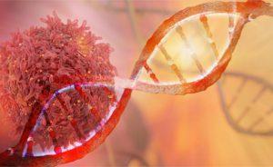 I danni del fumo: le mutazioni genetiche   Pazienti.it