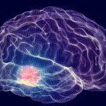 Avrai il Parkinson? Te lo dice un test | Pazienti.it