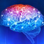 I segni premonitori dell'autismo | Pazienti.it