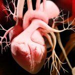 Perché si soffre di soffio al cuore | Pazienti.it