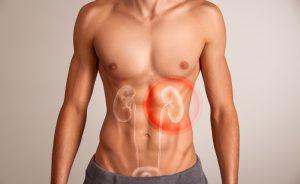 dieta per avere dei reni sani e purificati | Pazienti.it