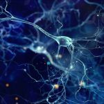 Autismo: sapresti riconoscere i primi sintomi? | Pazienti.it