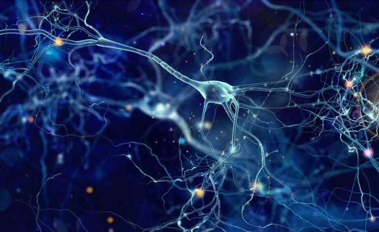 Autismo, nuovo farmaco lo cura nei topi: scienziati ottimisti