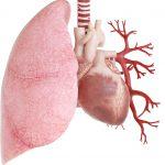Patologie-cardiache-150x150 | Pazienti.it