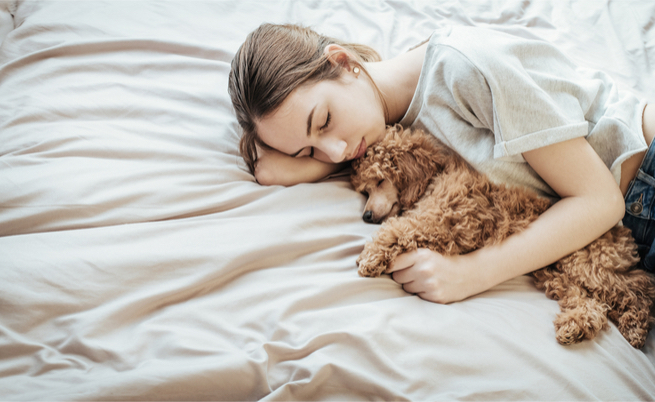 Dormire con il cane disturba il sonno: vero o falso?   Pazienti.it