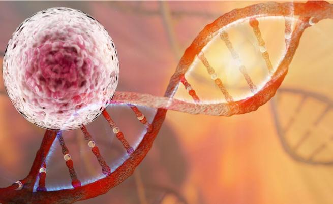 Tumori ereditari: ecco quali sono e come anticipare la diagnosi | Pazienti.it
