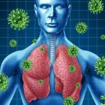 Le cipolle tengono lontani virus e batteri: vero o falso?   Pazienti.it
