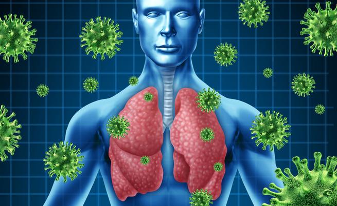 Le cipolle tengono lontani virus e batteri: vero o falso? | Pazienti.it