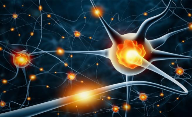 Demielinizzazione e danni ai nervi: non solo sclerosi multipla | Pazienti.it