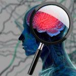 Alzheimer, nuovi test per la popolazione a rischio: ecco di cosa si tratta | Pazienti.it