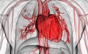 disfuzione erettile e disturbi cardiaci: il legame | Pazienti.it