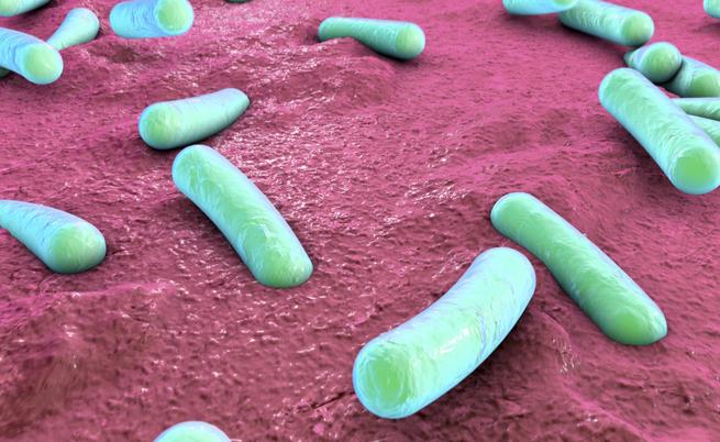 I batteri che causano malattie autoimmuni: dall'artrite al morbo di Crohn | Pazienti.it
