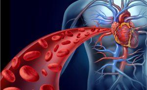 Tutte le cause degli enzimi cardiaci alti: dall'infarto del miocardio allo sforzo intenso | Pazienti.it
