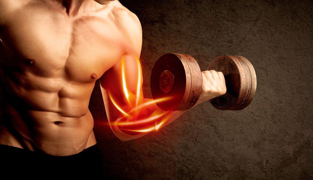 muscoli: come aumentarli