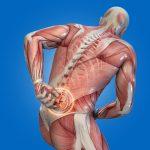 La stanchezza fisica e il dolore muscolare si riducono con il succo di ciliegia (e non solo)