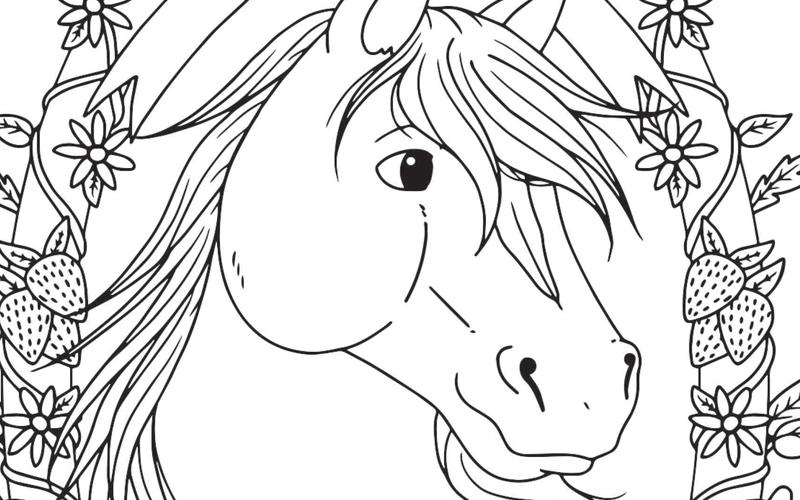 Mooi Paard Met Krans Penny