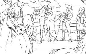 Paarden Kleurplaten Zoeken.Kleurplaat Archief Penny