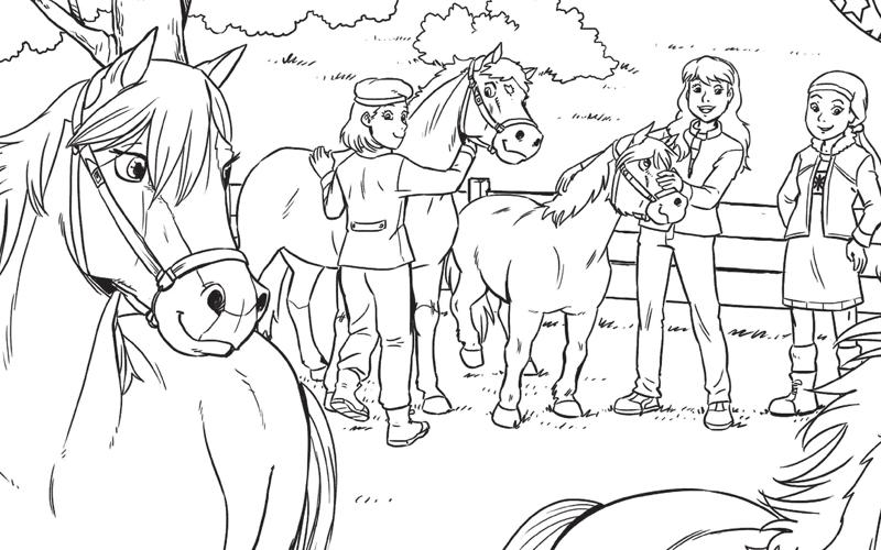 Paarden Buiten Penny