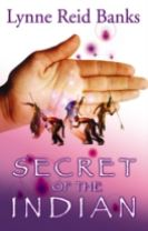 Secret of the Indian
