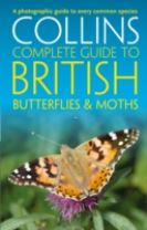 British Butterflies and Moths