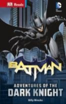 DC Comics Batman Adventures of the Dark Knight