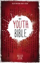 NIrV, Youth Bible, Anglicised Edition, Hardcover