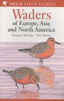 Waders of Europe, Asia and North America