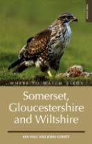 Where to Watch Birds in Somerset, Gloucestershire and Wiltshire