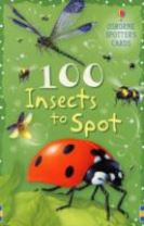 100 Insects to Spot Usborne Spotters Cards