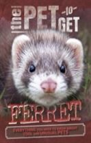 The Pet to Get: Ferret
