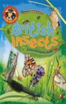 Nature Detective: British Insects