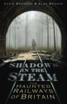 Shadows in the Steam