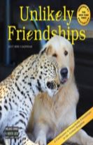 Unlikely Friendships Mini Wall Calendar 2017