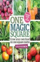 One Magic Square