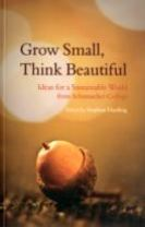 Grow Small, Think Beautiful