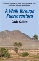 A Walk Through Fuerteventura