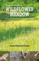 How to make a wildflower meadow
