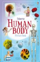 Human Body Picture Book