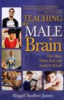 Teaching the Male Brain