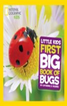 Little Kids First Big Book of Bugs