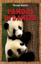 Animal Rescue: Pandas in Danger