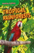 Amazing Habitats: Tropical Rainforests