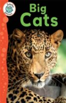 Tadpoles Learners: Big Cats