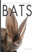 Animals Are Amazing: Bats