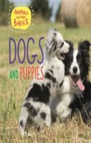 Animals and their Babies: Dogs & puppies