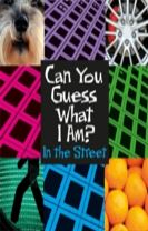 Can You Guess What I Am?: In the Street