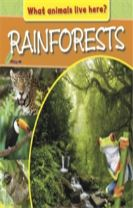 What Animals Live Here?: Rainforests