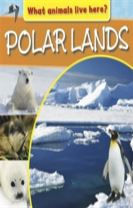 What Animals Live Here?: Polar Lands