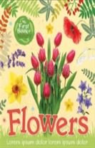 My First Book of Nature: Flowers