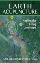 Earth Acupuncture